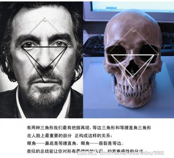 家里备有一幅骨骼的模型对于学习而言是很重要的,有全身的骨骼就最理想。尤其是头骨,即便是盗墓都要去弄一个来。卖手办模型的玩具店里会有一些高仿真的树脂头骨,那种很好。不要买石膏的,基本上看不清结构。真人骨骼的最大缺点是牙齿不全并且很难通过机场安检,所以买仿真的就好。下面是一些画人的小心得。 对于结构的几何分析几乎有无数种可能,并且不存在完美的形式,因为对于头骨,解剖是硬道理,所以更高层的总结很难适用于真正的写实,变来变去的也只会让自己无所适从,这是我的个人感受,因此认定一套差不多的让自己心里有底就行,最终的