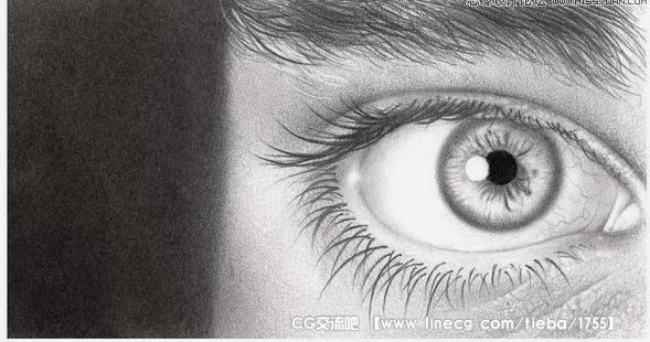 漂亮逼真的眼睛特写铅笔画欣赏
