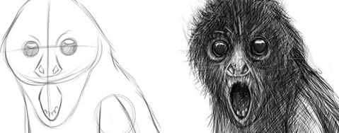 可爱猴素描画图片
