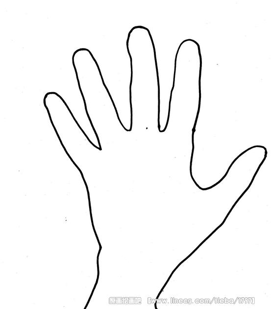 火鸡简笔画矢量图