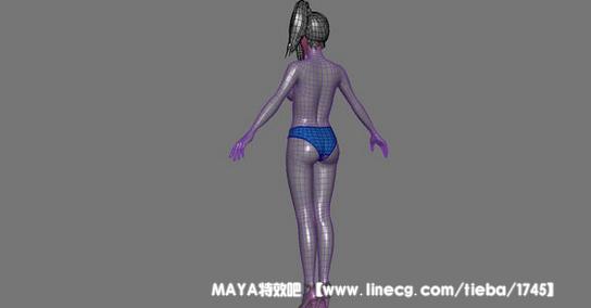 基准女人形体及布线构造图_maya特效吧吧_直线网_最的