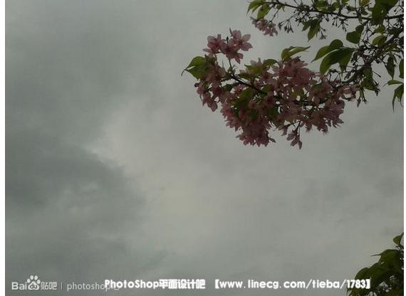 【教程】照片转古风效果… - PhotoShop平面设